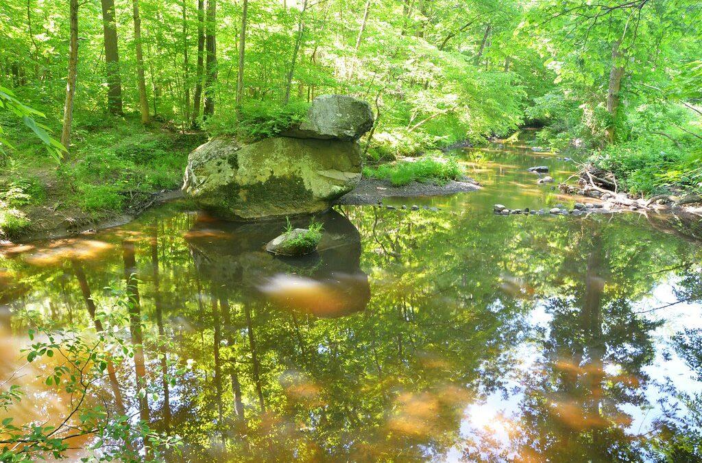 Beginner's Hike Fulshaw Craeg Preserve