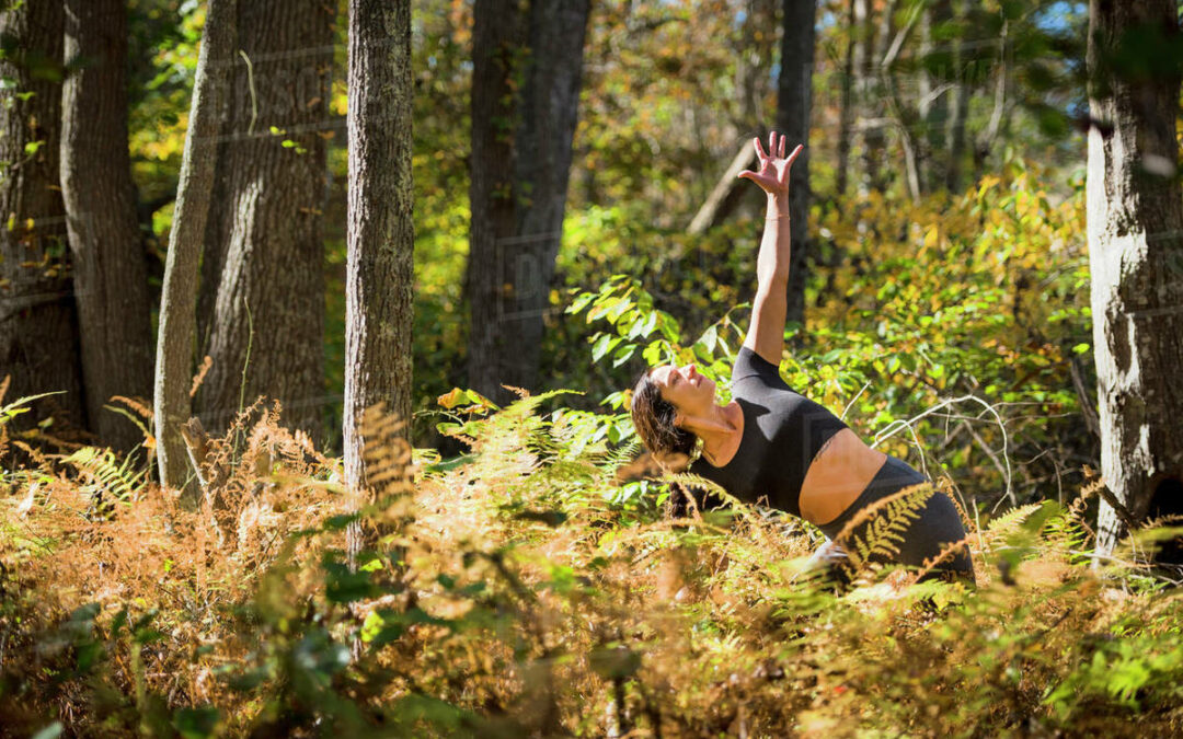 Field to Forest Yoga with Meaghan E at Camp Charles