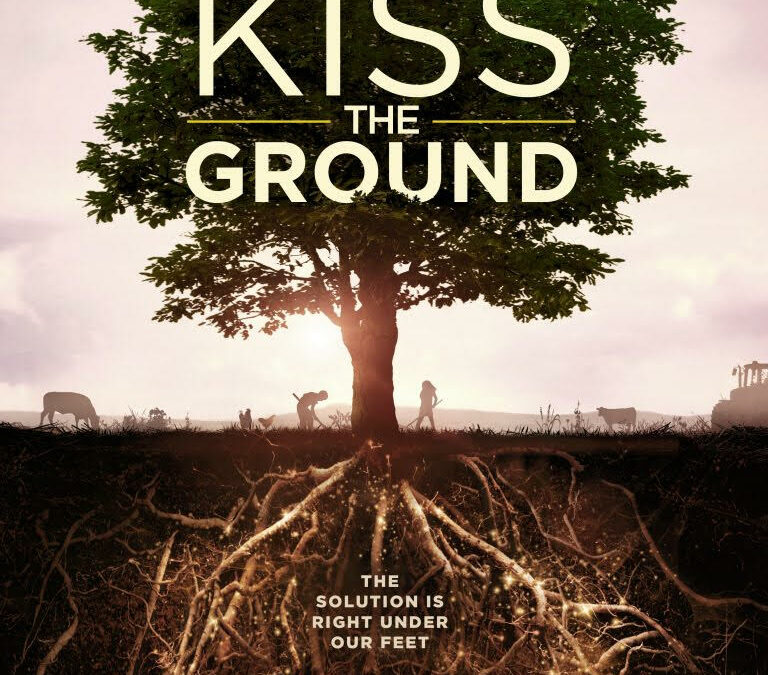 Movie Night at Palmer Recovery Center:  Kiss the Ground
